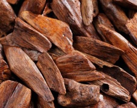 Сандаловое дерево (Sandal wood)